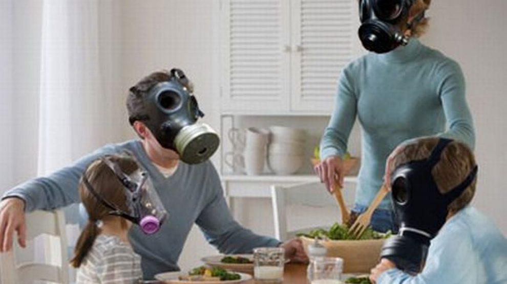 Datos con base científica sobre el uso de plantas para la mejora del aire interior